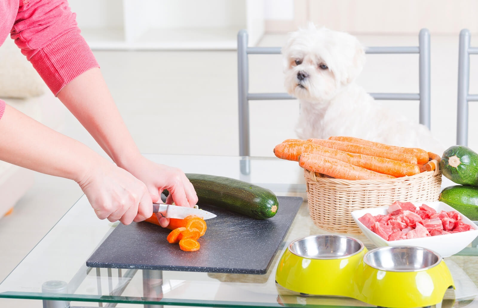 7 Recipes to Help You Create Your Own Dog Food at Home