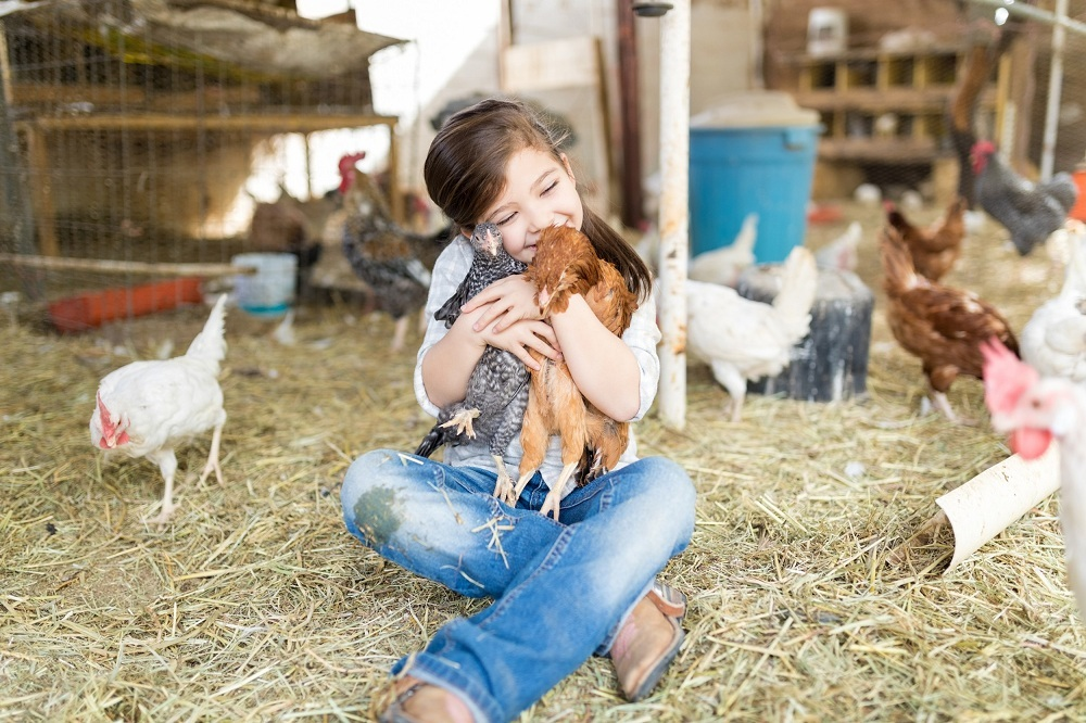 Livestock Care 101: Let's Start With The Basics