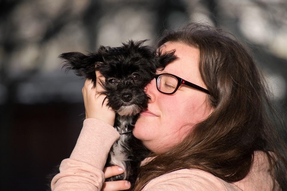 How to Make Home Quarantine Fun for Your Dog?