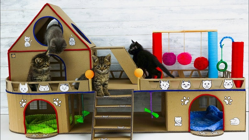 Know Where To Put Your Cat House Properly.