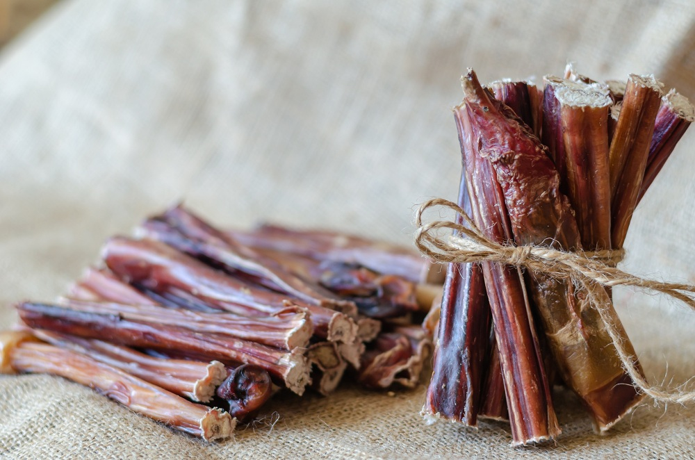 How To Choose The Best Bully Sticks For Your Dog