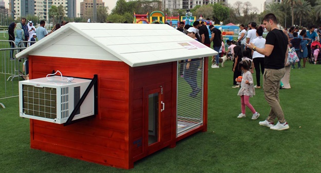 5 Things to Consider When Buying a Dog House in UAE