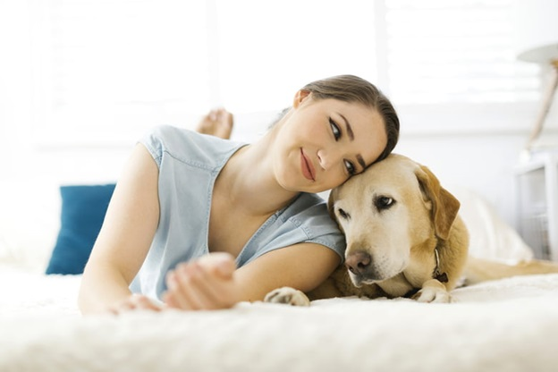 Best Outlet to Patronize For Pet Sitting