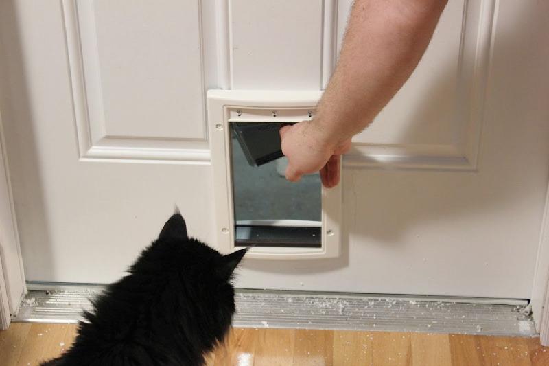 Can I Install A Doggie Door Myself?